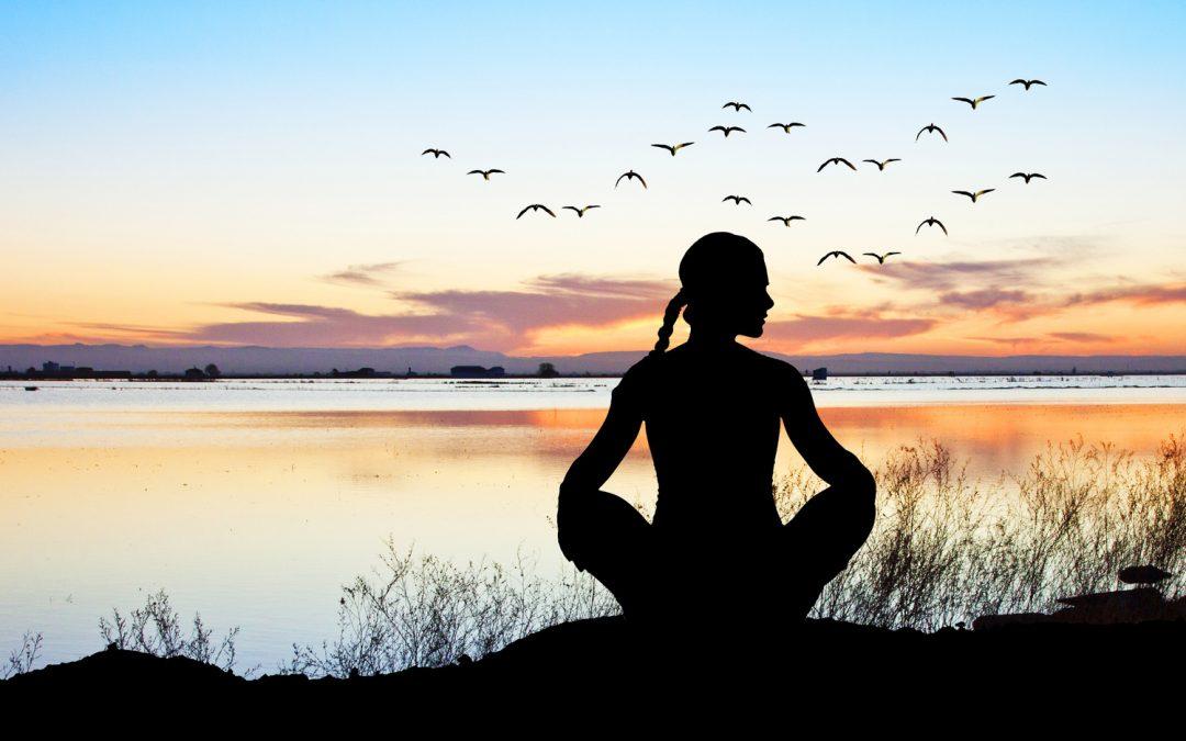 Programme de méditation module 2