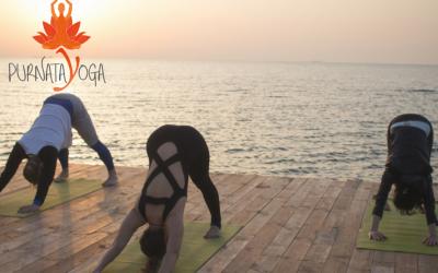 Nouveaux cours de Ashtanga Yoga traditionnel